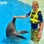 Dolphin Interactive Program at Dolphinaris.