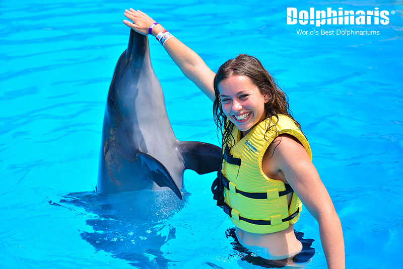 Interacting with dolphins at Dolphinaris.