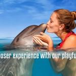 Nadar con delfines Cancun, Tulum y Cozumel. Dolphinaris programa interactivo.
