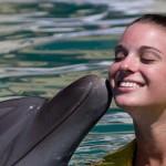 Dolphin Trainer Program Cozumel - dolphin kiss.