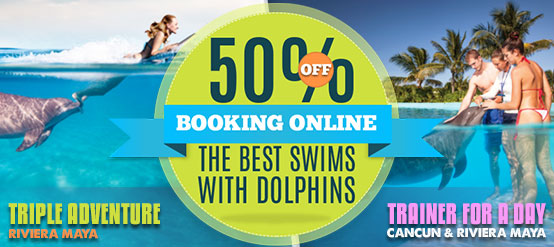Dolphin Trainer & Triple Adventure Swim programs