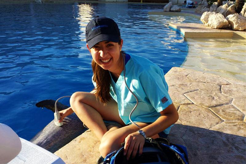 Dolphinaris AQUAVET III Cancún México