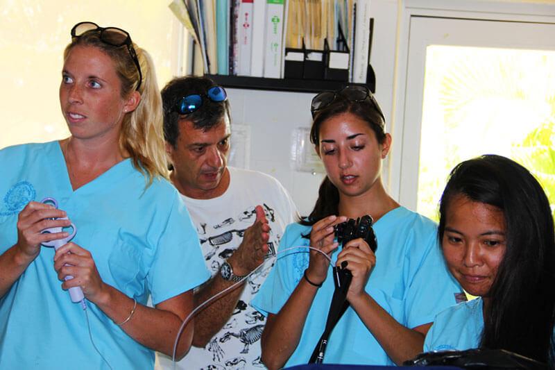 Dolphinaris AQUAVET III estudiantes veterinaria endoscopia