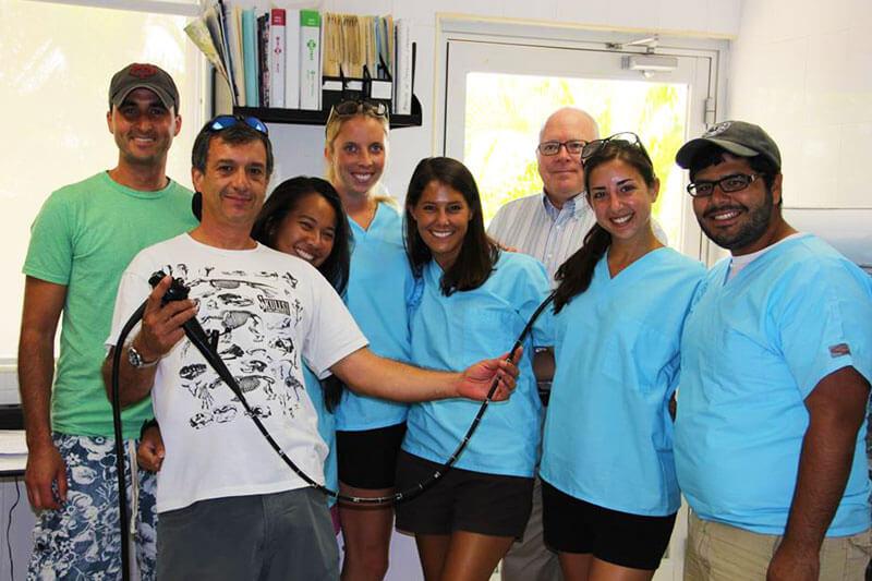 Dolphinaris AQUAVET III estudiantes veterinaria