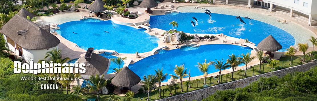 Nadar con delfines en Dolphinaris Cancún México