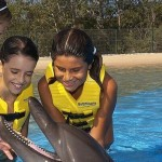 Dolphin Interactive Program Cozumel