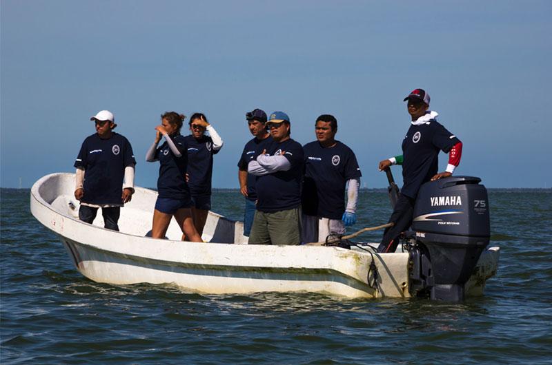 fundacion-dolphinaris-conservacion-laguna-terminos-campeche-mexico