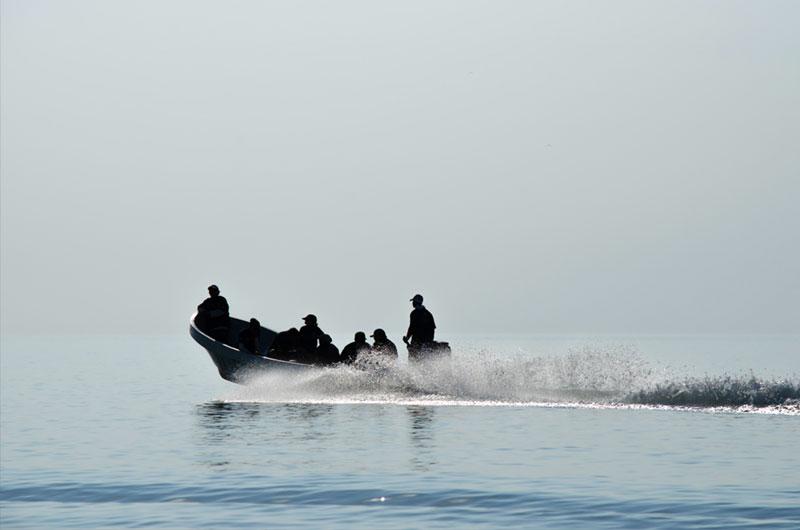 fundacion-dolphinaris-conservacion-laguna-terminos-humedal-mas-grande-reservas-mexico