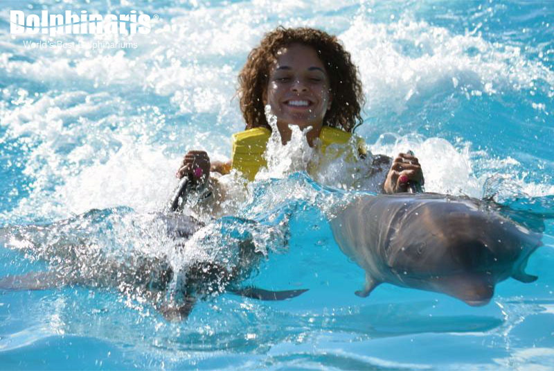 Enjoy the Dorsal Ride swimming with dolphins!
