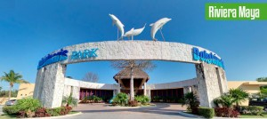 How to Get to Dolphinaris Riviera Maya