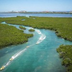 Jungle tour Laguna Nichupte Aquaworld más programa nado con delfines combo.