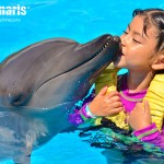 Kids all ages love to have a dolphin encounter!