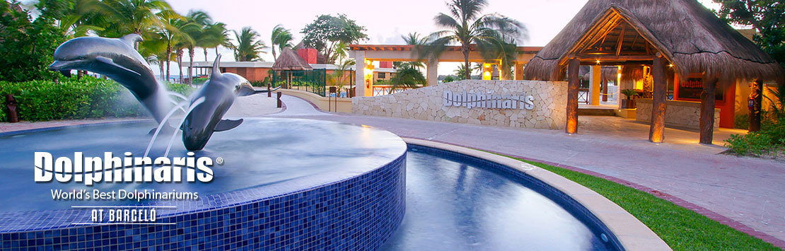 Nada com golfinhos em Dolphinaris Barceló Maya Resort Mexico