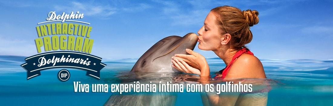 Programa Interativo com Golfinho