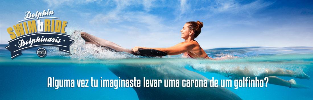 Nadar com golfinhos - Nado carona golfinho.