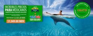 Nadar con delfines Cancún promoción para mexicanos.
