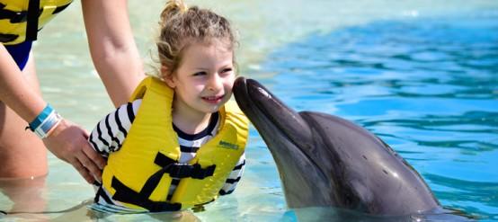 Nadar con delfines es una experiencia de vida para los niños