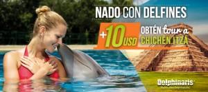Nadar con delfines en Cancún y Riviera Maya más tour a Chichén Itzá y cenote.