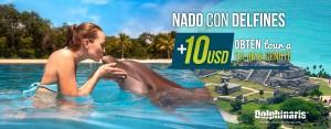 Descuento en nado con delfines Cancun y Riviera Maya combo con Tour a Tulum