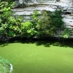 Nado con delfines más Chichen Itza - Cenote.