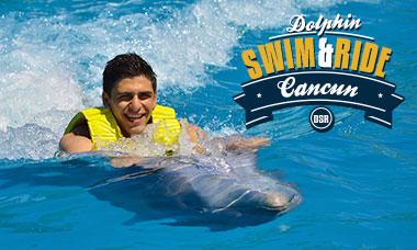 Nadar con delfines en Semana Santa en Cancún - Programa de nado e interacción con delfines