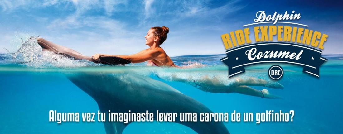 Golfinho Carona Experiência em Cozumel