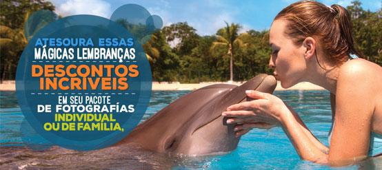 Pacote de fotos promoção online nadar com golfinhos.