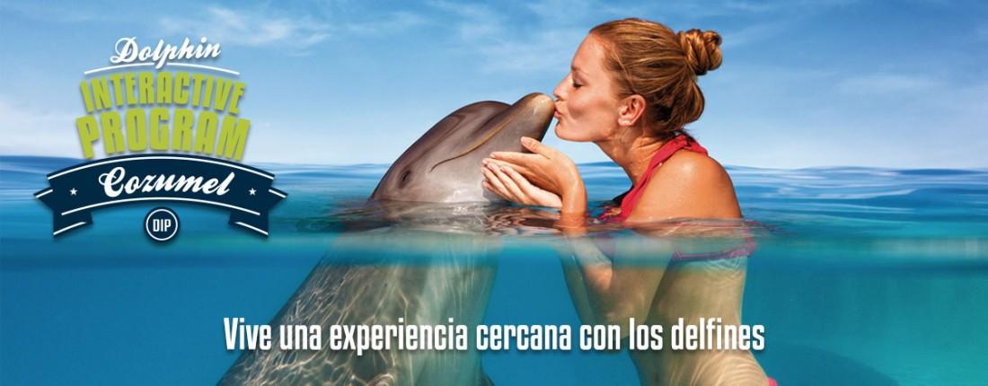Programa Interactivo con delfines en Cozumel