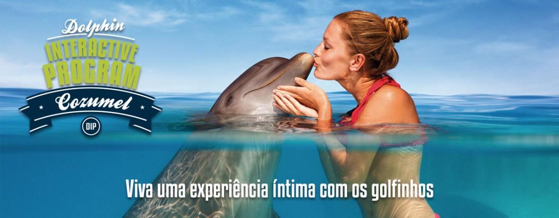 Programa interativo com golfinhos em Cozumel