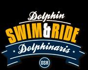 Programa nado carona com golfinho.