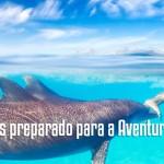 Programa Nado  Golfinho