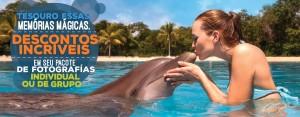 Descuento en paquete de fotos de nado con delfines.