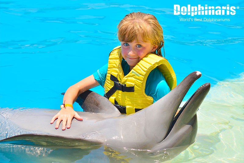 Smiles happen at Dolphinaris while interacting with dolphins.