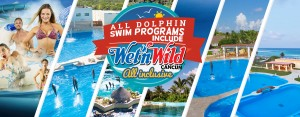 Summer break deals all swim with dolphins in Tulum + free Wet'n Wild Cancun