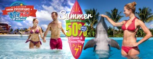 Promo Summer Break swim with dolphins más Wet'n Wild Cancún Gratis