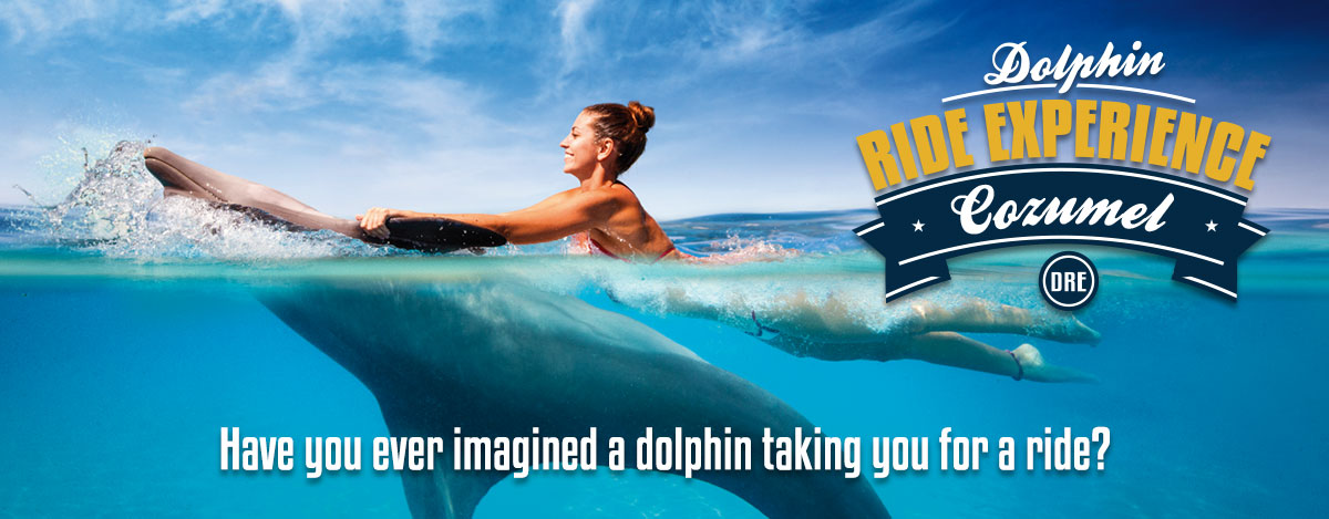 Swim with the Dolphins - Dolphin Ride Experience at Dolphinaris Cozumel