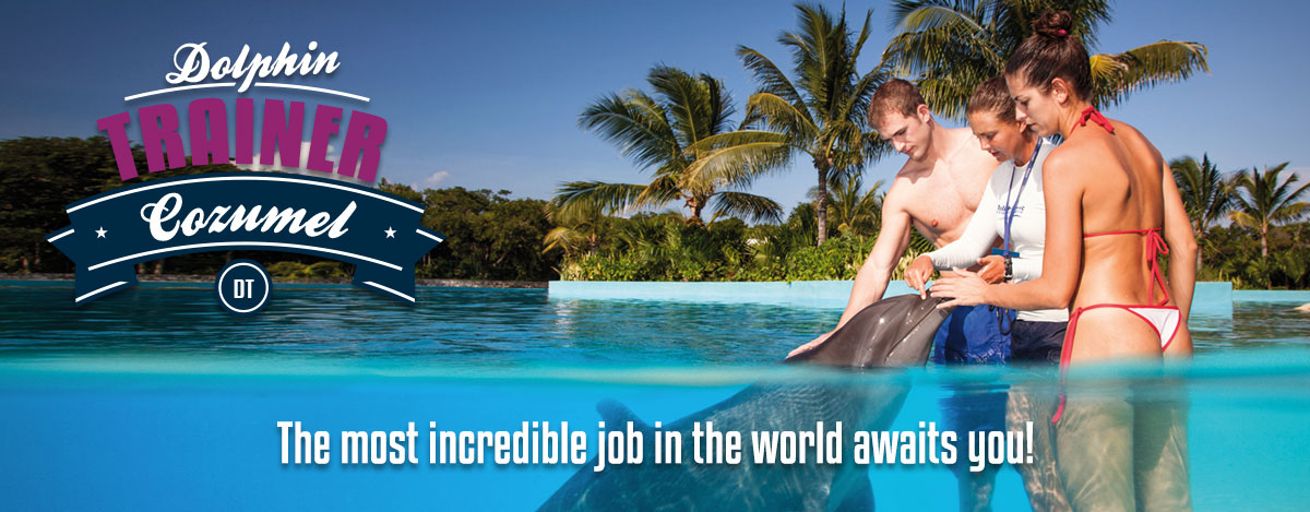 Swim program dolphin trainer in Dolphinaris Cozumel