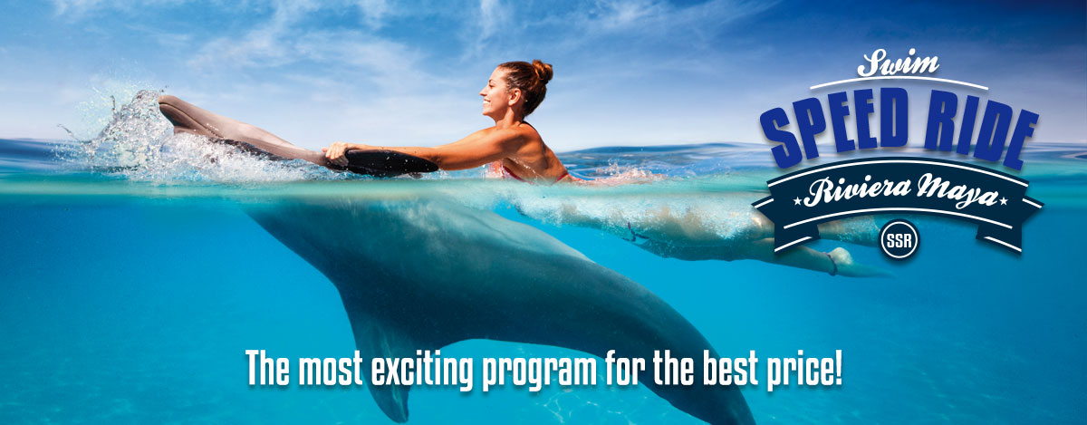 Swim with dolphins special price Swim Speed Ride program Riviera Maya Park