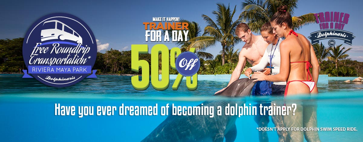 Swim with dolphins trainer for day program Cancun and Riviera Maya Park.