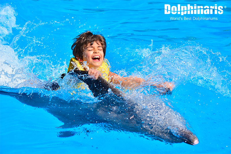 Have fun swimming with dolphins belly to belly!