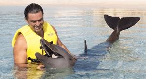 Riviera Maya Dolphins Interaction