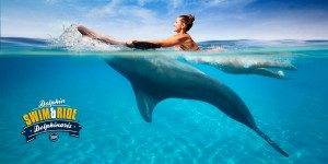 Dolphin Swim Ride Program - Dolphinaris