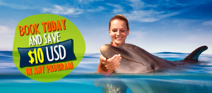 Swim with Dolphins online booking save 10 dollars