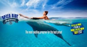 Swim Speed Ride Dolphin Program