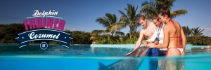 Swim with dolphins - Dolphin Trainer Cozumel