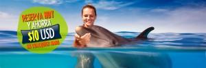 dolphinaris-reserva-hoy-descuento-nado-delfines