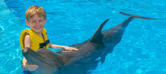 Dolphins and kids get along just fine!
