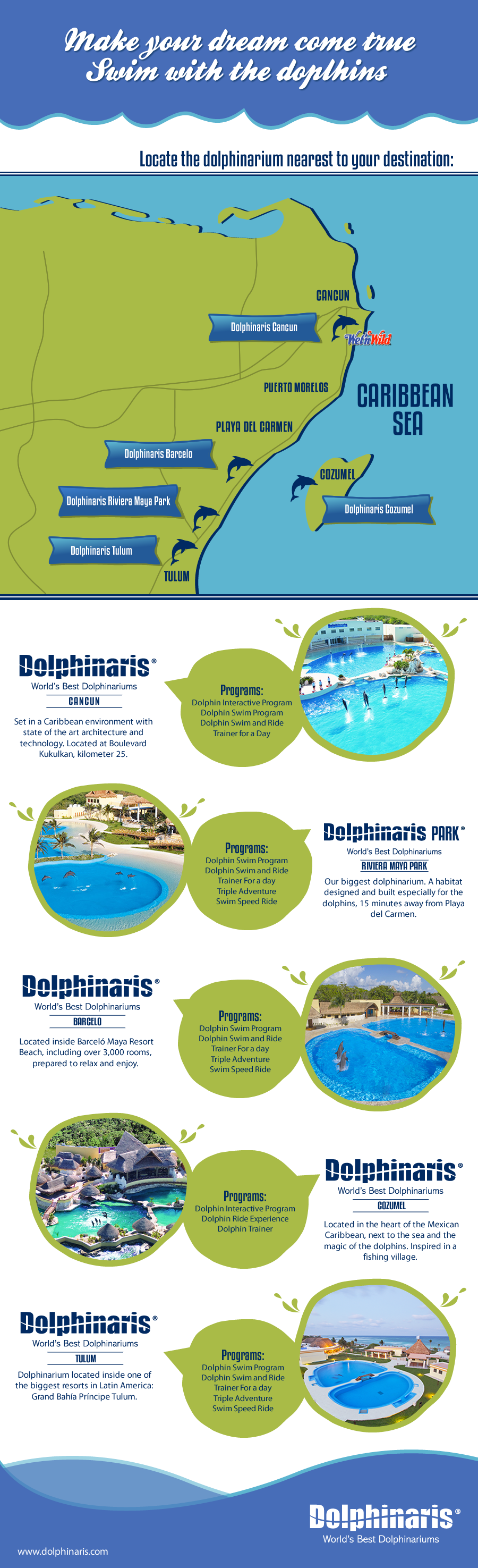 Dolphins can be discovered in many locations in Riviera Maya