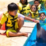 Learning about dolphins at Dolphinaris