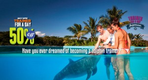 Swimming With Dolphins discount trainer for a day program. Cancun, Riviera Maya and Tulum.